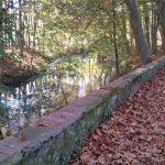 El riu Fluvià i els tossols, protagonistes de dues noves exposicions a Olot