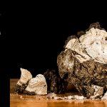 El Fons dels Museus: l'Ecce Home de Berga i Boada i un nou volcà