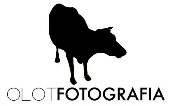 Biennal Olot Fotografia.
