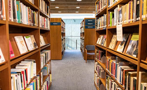 Biblioteca Marià Vayreda. Foto: Martí Albesa