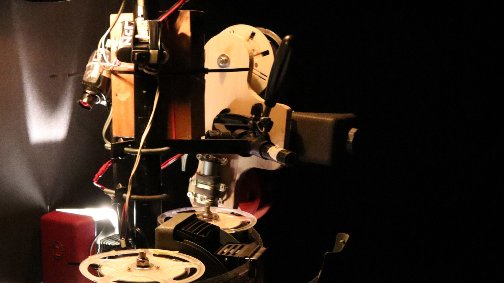 Oligor y Microscopía